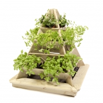Minigarden Pyramide