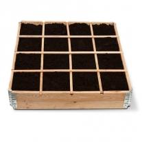 Start to garden